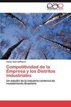 Competitividad de La Empresa y Los Distritos Industriales