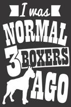 I Was Normal 3 Boxers Ago: Journal