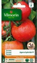 Vilmorin zaden - Tomaat Agora HF1