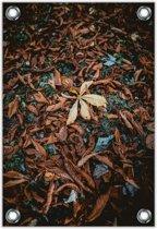 Tuinposter –Herfstbladeren– 100x150cm Foto op Tuinposter (wanddecoratie voor buiten en binnen)