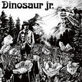 Dinosaur Jr