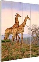 Giraffes fotoafdruk Hout 20x30 cm - klein - Foto print op Hout (Wanddecoratie)