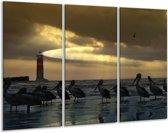Canvas schilderij Vogels | Geel, Zwart, Wit | 120x80cm 3Luik