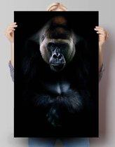 Gorilla  - Poster 61 x 91.5 cm