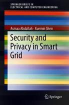 Security and Privacy in Smart Grid