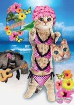 Kaart Poezen - Kaart Cats - Poezenkaarten
