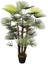 HTT Decorations – Kunstplant Rhapis palm H120cm
