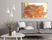 Diamond Painting Roos - Roze 35x35 cm - Bloemen - Rozen - Natuur