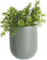 PT - Oval Wand Plantenpot M
