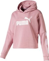 Amplified Cropped Hoody TR Trui Dames