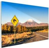 FotoCadeau.nl - Kiwi bord Nieuw-Zeeland Glas 30x20 cm - Foto print op Glas (Plexiglas wanddecoratie)