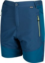 Regatta-Sungari Shorts-Outdoorbroek-Mannen-MAAT 176-Blauw