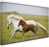 Paard en veulen rennen Canvas 30x20 cm - klein - Foto print op Canvas schilderij (Wanddecoratie woonkamer / slaapkamer) / Dieren Canvas Schilderijen