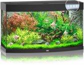 Juwel Vision 180 LED Aquarium - Zwart - 180L - 92 x 41 x 55 cm
