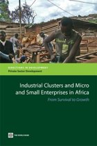 Industrial Clusters and Micro and Small Enterprises in Africa
