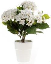 Kunstplant Hortensia wit in pot 37 cm - Kamerplant witte Hortensia