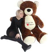 Grote knuffelbeer - XL teddybeer - bruin - 170 cm