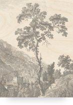 Houten paneel, engraved tree, KEK Amsterdam, large