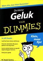Voor Dummies - De kleine Geluk voor Dummies