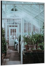 Dibond –Greenhouse/Kas – 80x120cm Foto op Aluminium (Wanddecoratie van metaal)