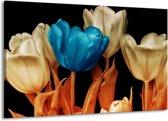 Canvas schilderij Tulp | Blauw, Oranje, Zwart | 140x90cm 1Luik