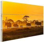 Kudde olifanten bij zonsopkomst Hout 60x40 cm - Foto print op Hout (Wanddecoratie)