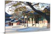 Mooi hangende boom over de paleizen bij Changdeokgung Aluminium 90x60 cm - Foto print op Aluminium (metaal wanddecoratie)