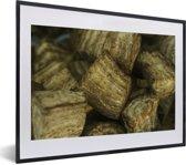 Foto in lijst - Close-up van een arrowroot of pijlwortel fotolijst zwart met witte passe-partout klein 40x30 cm - Poster in lijst (Wanddecoratie woonkamer / slaapkamer)