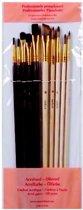 Professionele Penselenset voor Acrylverf & Olieverf | Penselen 10 stuks | Schilderen / Knutselen \ Verven | Hobbypenselen
