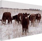 FotoCadeau.nl - Kudde koeien in een sneeuwveld Canvas 80x60 cm - Foto print op Canvas schilderij (Wanddecoratie)
