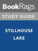 Summary & Study Guide: Stillhouse Lake