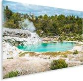 De Nieuw-Zeelandse Whakarewarewan vallei Plexiglas 60x40 cm - Foto print op Glas (Plexiglas wanddecoratie)