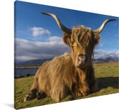 Een liggende Schotse hooglander Canvas 90x60 cm - Foto print op Canvas schilderij (Wanddecoratie woonkamer / slaapkamer) / Wilde dieren Canvas Schilderijen