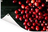 Fel reed met cranberry's Tuinposter 90x60 cm - Tuindoek / Buitencanvas / Schilderijen voor buiten (tuin decoratie)