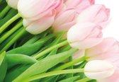 Fotobehang Bloemen | Groen | 312x219cm