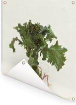 Het groene bladmoes tegen een lichte achtergrond Tuinposter 120x160 cm - Tuindoek / Buitencanvas / Schilderijen voor buiten (tuin decoratie) XXL / Groot formaat!