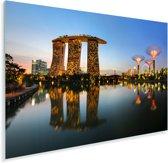 Prachtige verlichting in Gardens by the Bay Plexiglas 30x20 cm - klein - Foto print op Glas (Plexiglas wanddecoratie)