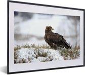 Foto in lijst - Steppearend zit in de sneeuw fotolijst zwart met witte passe-partout klein 40x30 cm - Poster in lijst (Wanddecoratie woonkamer / slaapkamer)