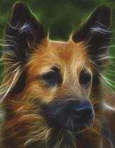 Dog Composition Book