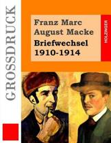 Briefwechsel 1910-1914 (Gro druck)