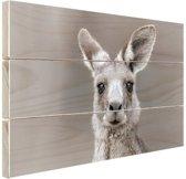Kangoeroe portret Hout 120x80 cm - Foto print op Hout (Wanddecoratie)
