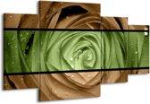 Canvas schilderij Roos | Groen, Bruin | 160x90cm 4Luik