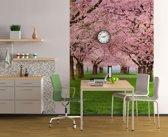 Bomen in bloei  - Fotobehang 183 x 254 cm