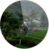 Man in rijstveld   Wanddecoratie   Ronde Plexiglas   80CM x 80CM   Schilderij   Foto op plexiglas
