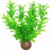 Superfish easy plants voorgrond nr. 8, van plastic 13 cm - 1 ST