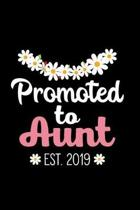 Promoted to Aunt Est. 2019