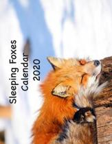 Sleeping Foxes Calendar 2020