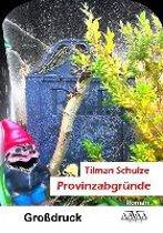 Provinzabgründe - Großdruck