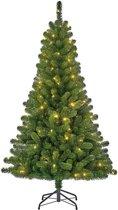 Black Box kunstkerstboom met led charlton maat in cm: 120 x 71 groen met 60 warmwitte led lampjes