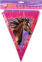 Paarden vlaggenlijn - 10 meter